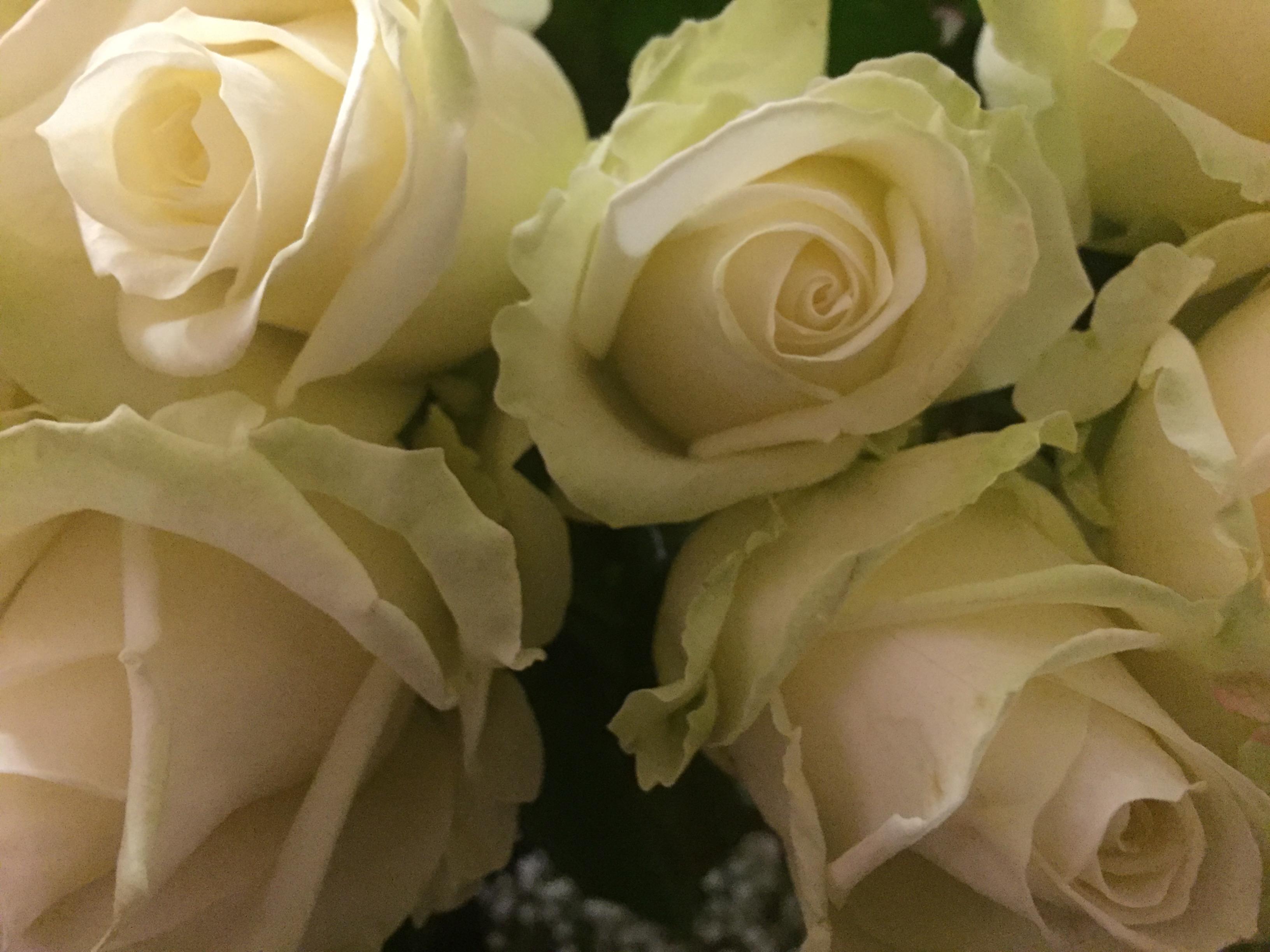 Say it with flowers eileens funerals izmirmasajfo